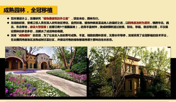 龙湖别墅景观案例