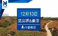 """""""高开低走""""电建9000元/㎡竞得皇冠湖旁152亩地块"""